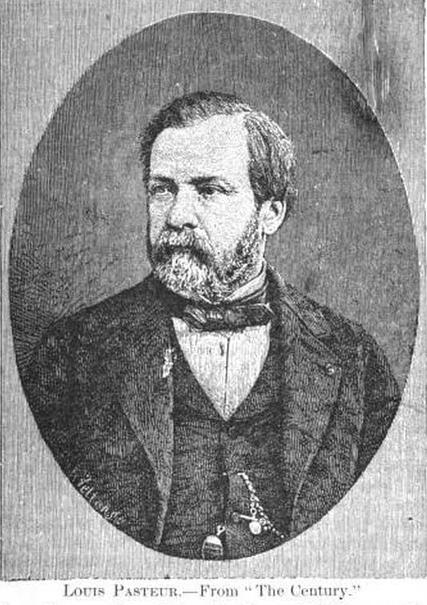 The Druggist Louis Pasteur Biography Pasteur Brewing