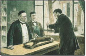 Louis Pasteur experimenting on a rabbit