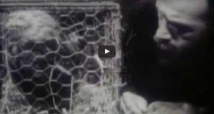 Reconstruction of Pasteur's Life - 1940's Film